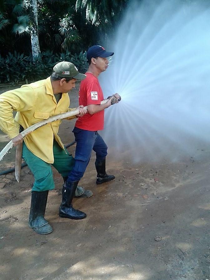 Técnicos em Segurança do Trabalho participam de Treinamento de Combate a Incêndio Florestal
